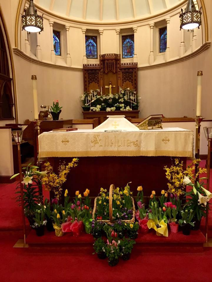 A special thanks to the Altar Guild who made the church look so beautiful this year.